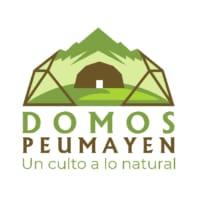 Logo realizado por Ingenium